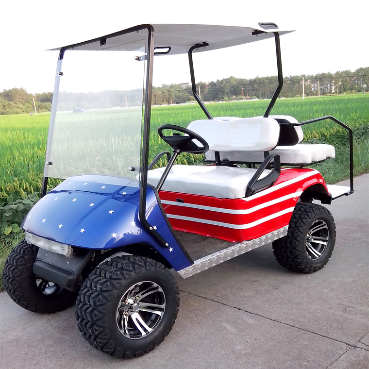 2 Seater Electric Golf Car Golf Cart