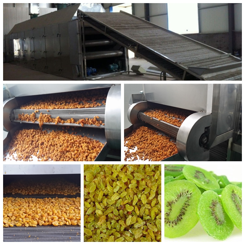 Preserved & Dried Fruit Processing Line