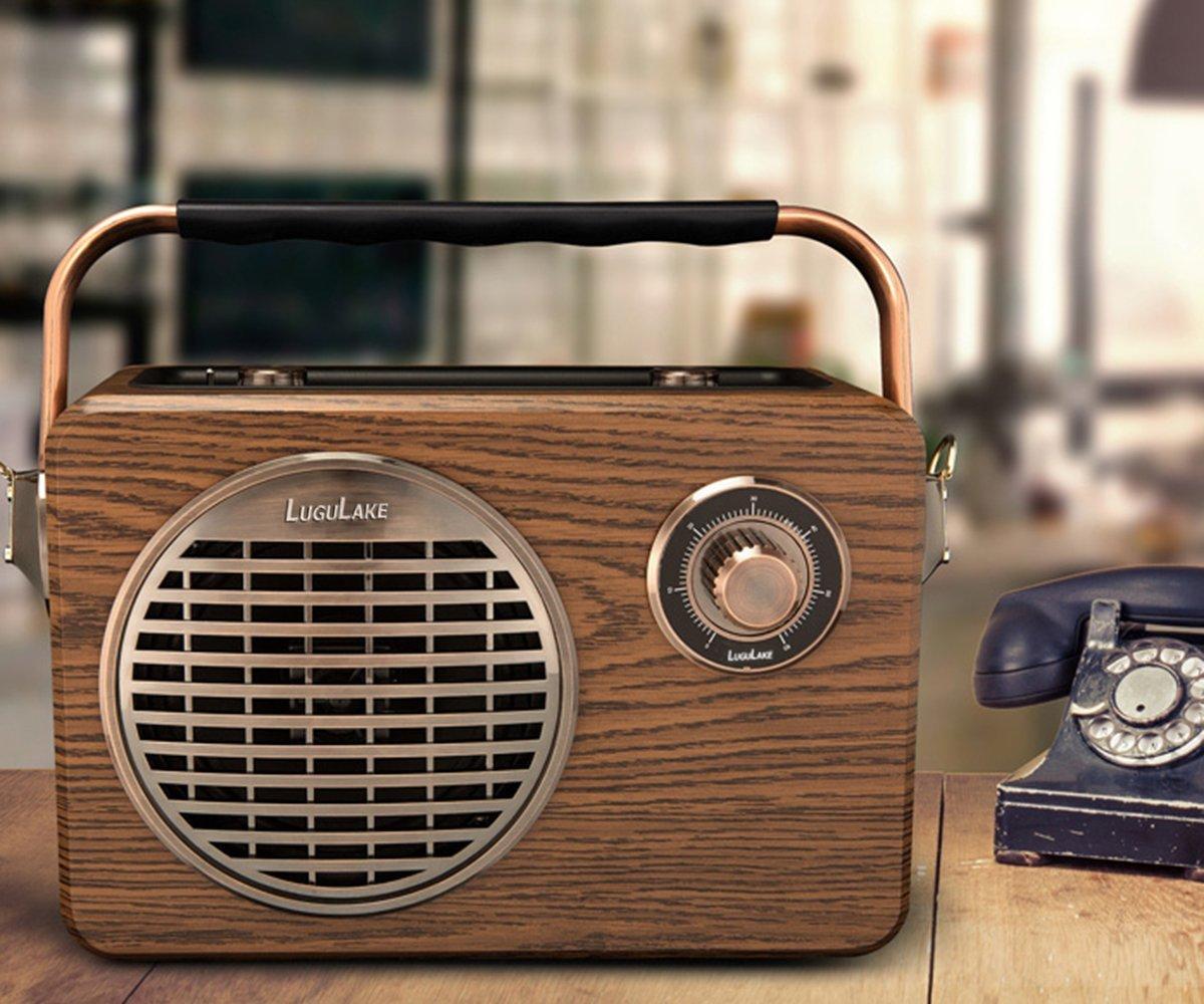LuguLake Handheld Multifunction Bluetooth Speaker PA System with Power Bass FM Radio Mic Input USBTF Readers Remot