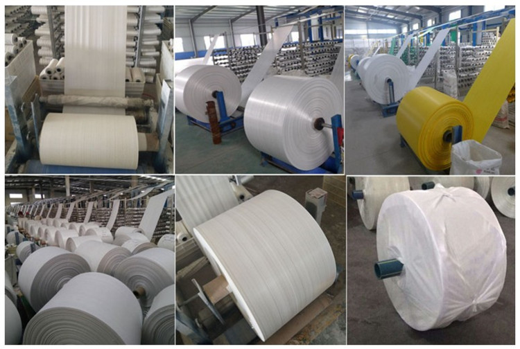 Shandong Shunxin International Trade Co., Ltd.