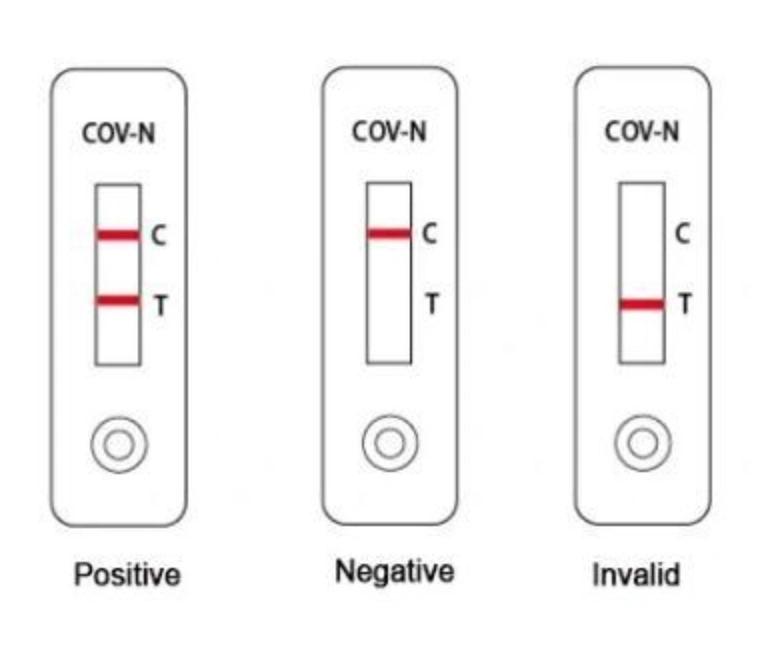 Covid19 SARScov2 Igg Igm Antibody Test Kit Instant Result within 15 Minutes