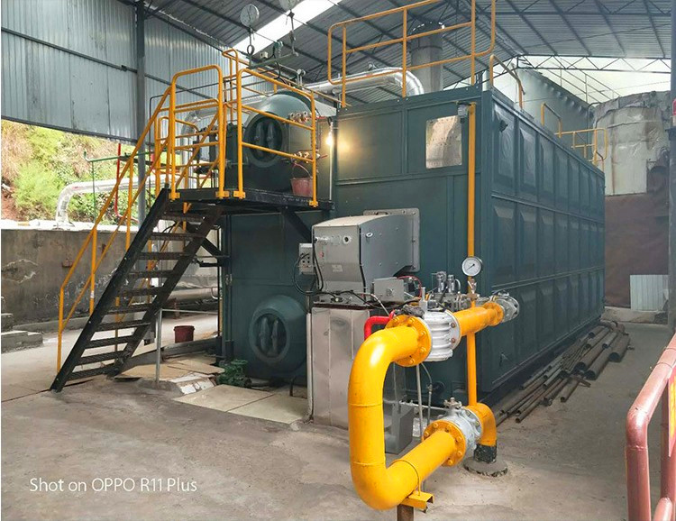 12 Ton Competitive Price SZS Double Drum Gas/Oil Fired Industrial Steam Boiler for Hospital