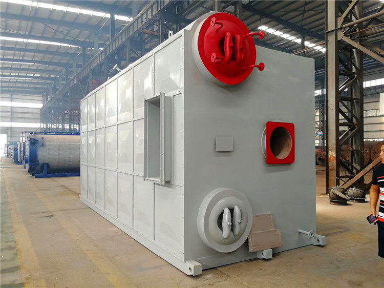 20 Ton/h SZS Series Water Tube Gas/Oil Fired Steam Boiler for Food Industry/Food Plant